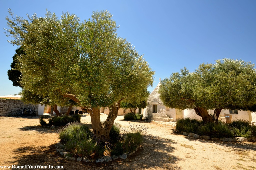The Trulli Property. The insides are modern, the outsides haven't been touched since the 1500s.