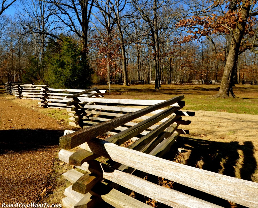 All along the Natchez Trace. My aunt, from Boston, kept remarking how beautiful the fences are.